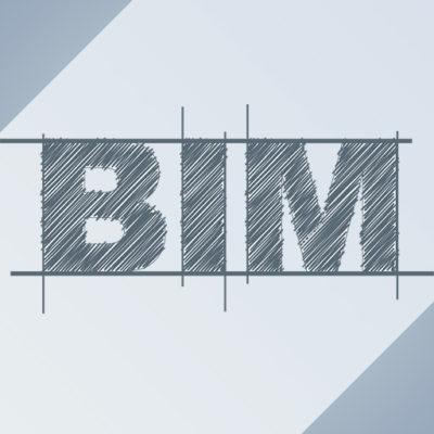 BIM 100